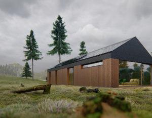 wizualizacje 3d białystok | dom w gorach