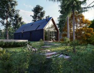 wizualizacje 3d | bialystok | dom w lesie