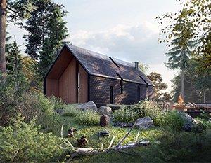Wizualizacje 3d | Nowoczesny dom w lesie